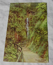 ARQ006 - SHANKLIN CHINE - Isle of Wight - A R Quinton #2262 POSTCARD