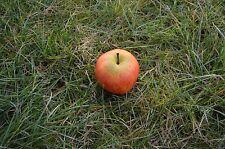 Gran manzana schraubnano geocaching escondite recipientes micro lata caché Nano