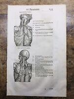 Anatomie 1614 Ambroise Paré Jumeau Rhumatologie Kinésithérapie Muscles Gravure