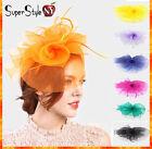 Wedding Fascinator Feather Mesh Flower Rose Church Kentucky Hair Pinch Hat Derby