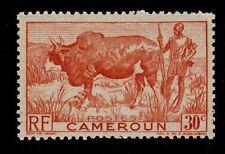 CAMEROUN   SCOTT# 305  MNH  ANIMAL TOPICAL
