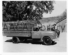 1950 Chevrolet 6400 Farm Stake Truck, Horses, Factory Photo (Ref. # 32604)