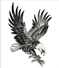 Temporary Tattoo #72 Bald Eagle Wings Body Art Stickers Removable Waterproof