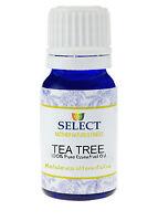 Tea Tree Essential Oil Pure Maleleuca Alternifolia 10ml Aromatherapy