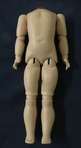 """NEW 17"""" (43CM) SHEER ELEGANCE GERMAN BALL-JOINTED COMPOSITION DOLL BODY"""