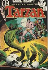DC Comics Tarzan Of The Apes (1972 Series) # 225 FN/VF 7.0