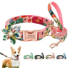 Fancy Personalized Dog Collar and Leash ID Name Tag Engraved & Metal Buckle S-L