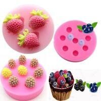 Silicone Blueberry Strawberry Fondant Mold 3D Cake Decor Chocolate Baking Mould