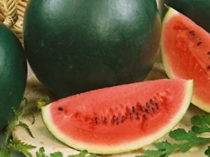 "Watermelon Seeds ""Sugar Baby"" (15 Seeds) Excellent Variety"
