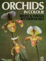 Orchids in Colour, Rittershausen, Wilma, Rittershausen, Brian, Very Good Book