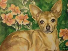 Chihuahua dog animal collectable print of painting