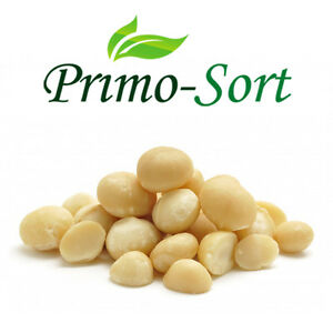 NATURAL MACADAMIA NUTS PREMIUM QUALITY 95% WHOLE PICES LOW PRICE 100G-450G