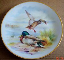 AJL Giftware England Collectors Plate MALLARD DUCKS