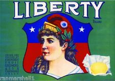 Escondido San Diego County Liberty Girl #3 Lemon Citrus Fruit Crate Label Print