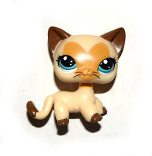 Littlest Pet Shop Yellow Brown Short Hair Siamese Cat Figure Child Toy