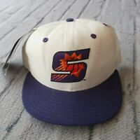 Vintage New Phoenix Suns Hat by New Era 90s Cap Fitted