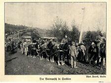 1915 Balkankrieg * Deutscher Vormarsch in Serbien *  WW1