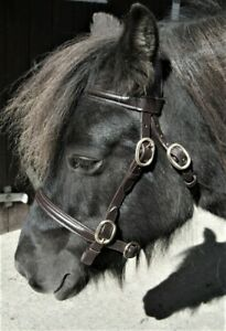 """SHETLAND LEATHER IN HAND BRIDLE WITH FREE 48"""" LEATHER LEAD REIN BLACK OR BROWN"""