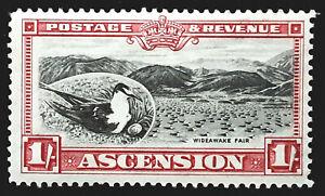 Ascension Stamp 1934 1/- Sooty Tern Wideawake Fair Scott # 30 SG28 MINT OG H