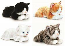 Adorable Cute Keel Cat 25cm White Called Tiffany Soft Toy Life Like a Birman