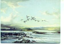 STREAM FROM THE HILLS Ducks in Flight Vernon Ward unused sketch postcard