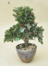Bonsai Tree in Ceramic Pot Artificial Plant Decoration for Office and Home 33cm Green