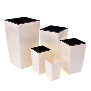 Medium Cream Orchid Pot Square Home Office Desk Solid Flower 20cm Tall Modern