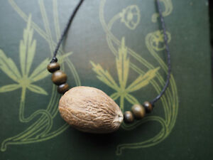 Unusual Nutmeg pendant - Charm Against Backache - Pagan, Wicca, Magic, Healing