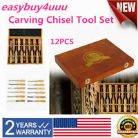 USA 12pcs Steel Wood Carving Hand Chisel Tool Set Woodworking Detail Chisel