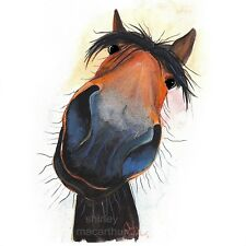 HORSE PRINTS WaLL ART CaNVaS DeCoR of Original Painting 'HAPPY DAVE'by SHIRLEY M