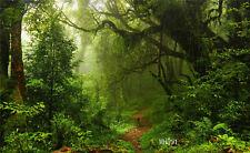 7x5ft Jungle Forest Vinyl Backdrop Studio Photography Photo Background Party Dec