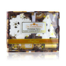 Ashleigh & Burwood Scented Ceramics & Room Spray Gift Set: Christmas Spice