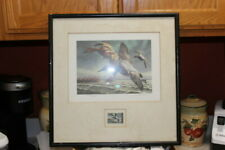 1982 Federal Duck Stamp Numbered Edition Print with Stamp Rw49 Canvasback Ducks!