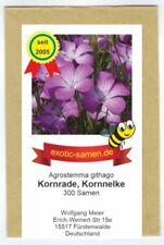Kornrade - Bienenweide - bedrohte Art - Blume des Jahres 2003 - 300 Samen