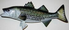 "Striped Bass Taxidermy Quality 12"" Wall Mount"