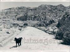 1975 Ancient City of Petra Jordan Press Photo