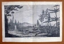VUE DE L'ILE DES PINS EN NOUVELLE CALEDONIE Gravure Voyage de COOK James 1778