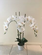 New Artificial Fake Real Touch Flower Potted Phalaenopsis Orchid White 70cm