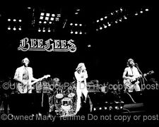 THE BEE GEES PHOTO ROBIN BARRY MAURICE GIBB Concert Photo in 1979 by Marty Temme