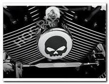 chrome skull g harley softail dyna touring sportster horn cover willie fxr flst