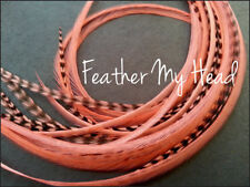 Feather Hair Extension 9 - 12 In Long (23-30cm) Grizzly/Solid 10 Pc Coral Pink