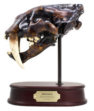 Smilodon Sabertoothed Cat / Sabertooth Tiger Skull Model Replica 1:2 Scale