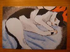 "POSTCARD...""TRUST ME - CADBURY THE CAT""...BLACK & WHITE CAT...PUSSYCAT...FELINE"