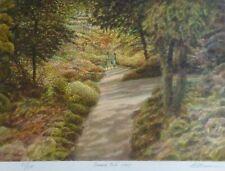 "Harold Altman "" Shaded Path 1989"" original lithograph HAND SIGNED US Artist"