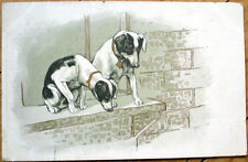 1902 Dog Postcard: Two Puppies Looking from a Window Ledge - Color Litho