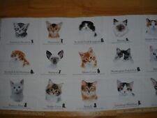 Cat Breeds Birman Maine Coon Siamese Ocicat Cotton Quilt Fabric Panel