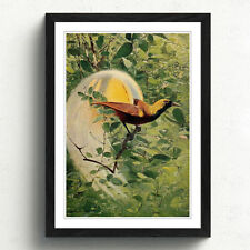 Multi-Colour Vintage Birds Art Prints