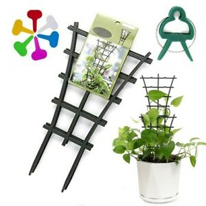 Garden Plant Support For High Climbing Flower Plant Tie Support + Clip & Label
