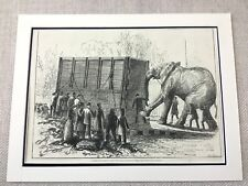 1882 Victorian Circus Jumbo the Elephant London Zoo Original Antique Print