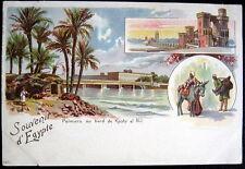 EGYPT~1900's SOUVENIR DE EGYPTE~Palmiers au bord de Kashr el Nil~GRUSS AUS LITH.